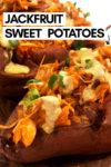 "an array of buffalo jackfruit sweet potatoes with a text overlay that reads ""jackfruit sweet potatoes"" with an arrow pointing toward a potato"