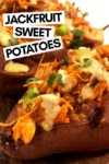 "an array of buffalo jackfruit sweet potatoes with a text overlay that reads ""jackfruit sweet potatoes"" with an arrow pointing toward a potato"