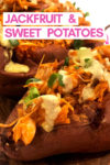 "an array of buffalo jackfruit sweet potatoes with a text overlay that reads ""jackfruit & sweet potatoes"" with an arrow pointing toward a potato"