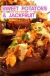 "an array of buffalo jackfruit sweet potatoes with a text overlay that reads ""sweet potatoes & jackfruit"" with an arrow pointing toward a potato"