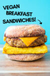 "one vegan breakfast sandwich with a blue background and a text overlay that reads ""vegan breakfast sandwiches"" and an arrow pointing toward the sandwich"