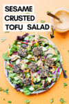 "a plate of sesame crusted tofu salad with peanut dressing off to the side with a text overlay that reads ""sesame crusted tofu salad"""